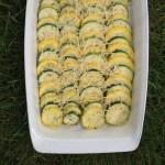 Summer Squash Bake