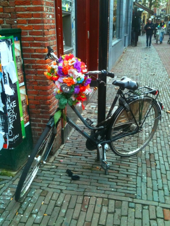Expat Story Amsterdam Netherlands