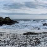 Scottish Coastal Walk (9/48)