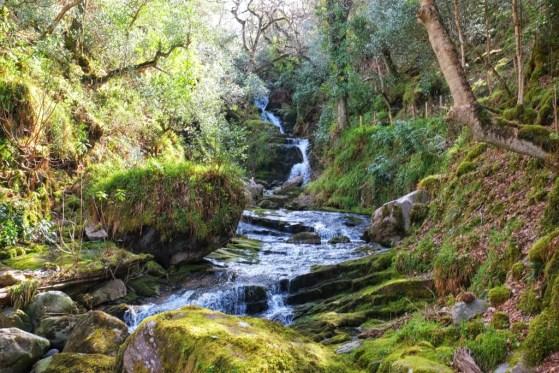 Killarney National Park Walk, County Kerry, Killarney, Ireland, Walks, #48walks, OSullivans Cascade