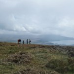 Bray Head Loop Walk {Ireland} (17/48)