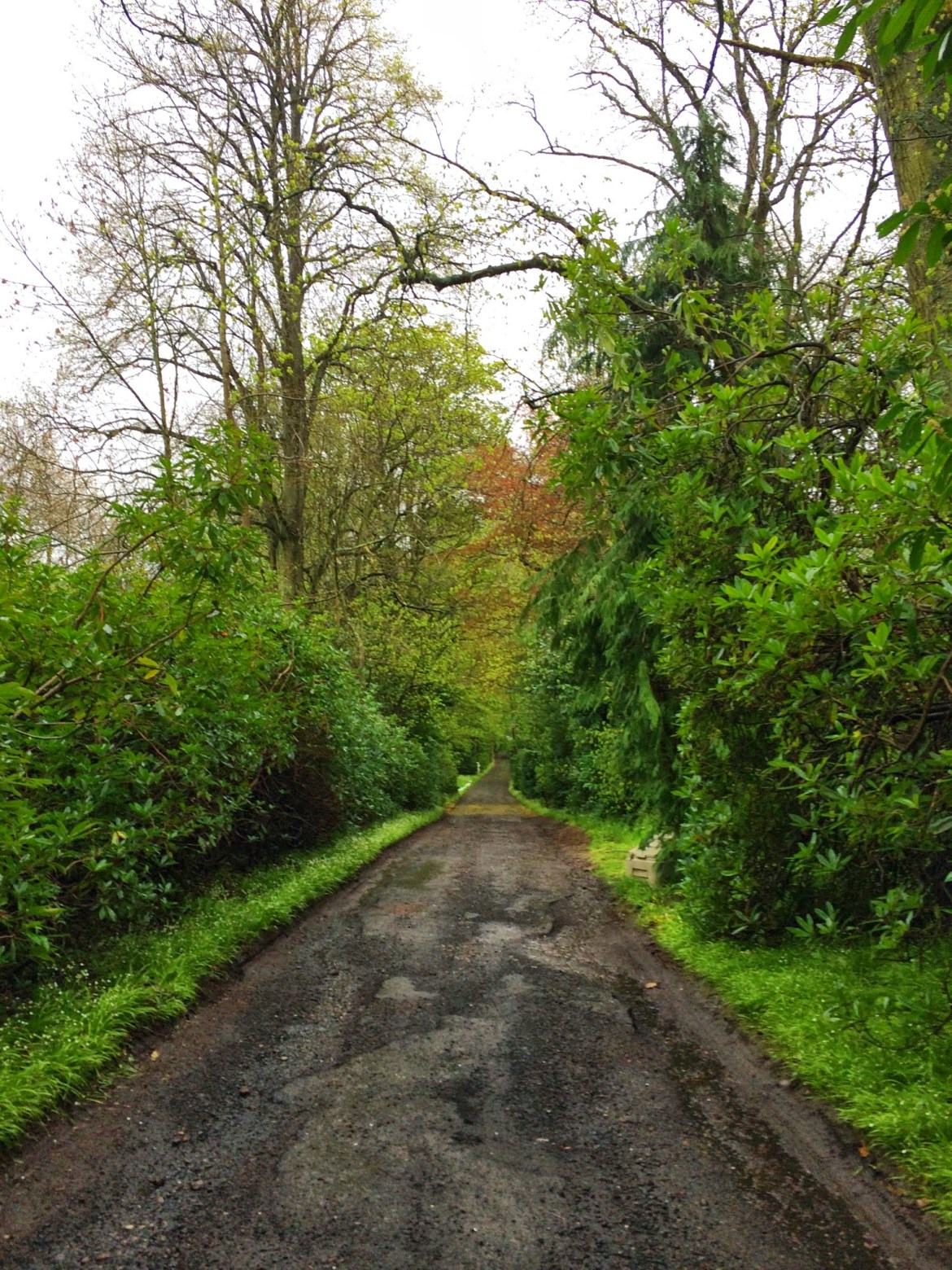 Lane to Fauhope House