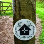 St Cuthbert's Way 20/48 {Scotland + England}