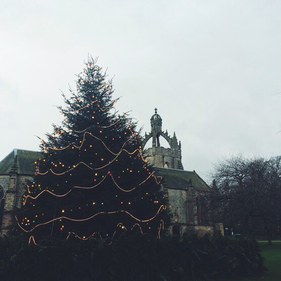 The Christmas Tree at Kings College, Scotland