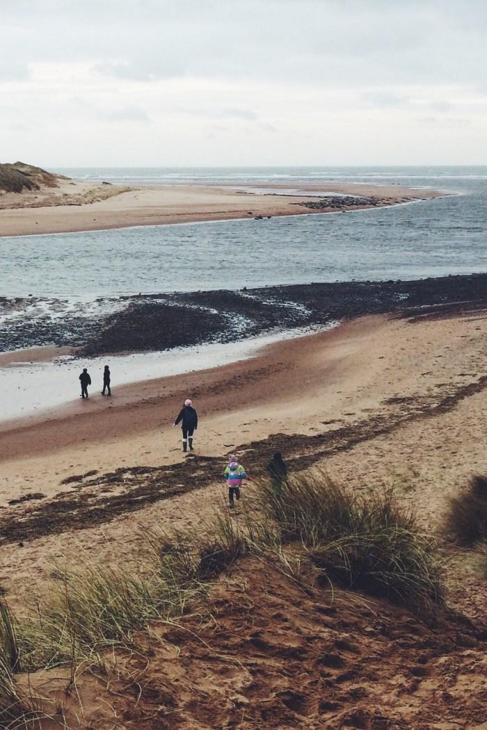 Newburgh Beach, Sand Dunes, Seals, Scotland