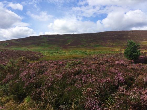Mt Keen Scotland, Munro Bagging, Hillwalking in the UK, Heater