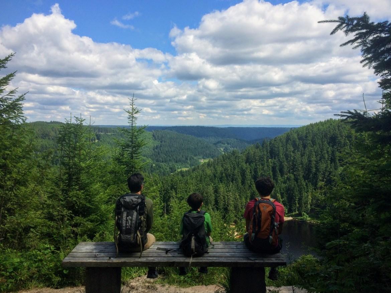 Black Forest 08