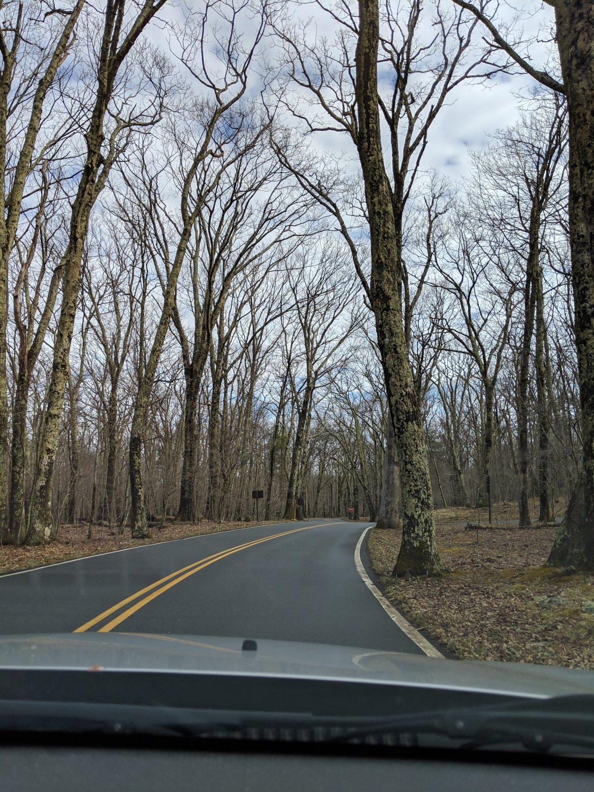 Shenandoah National Park, Appalachian Trail, Hiking, Virginia, Skyline Drive