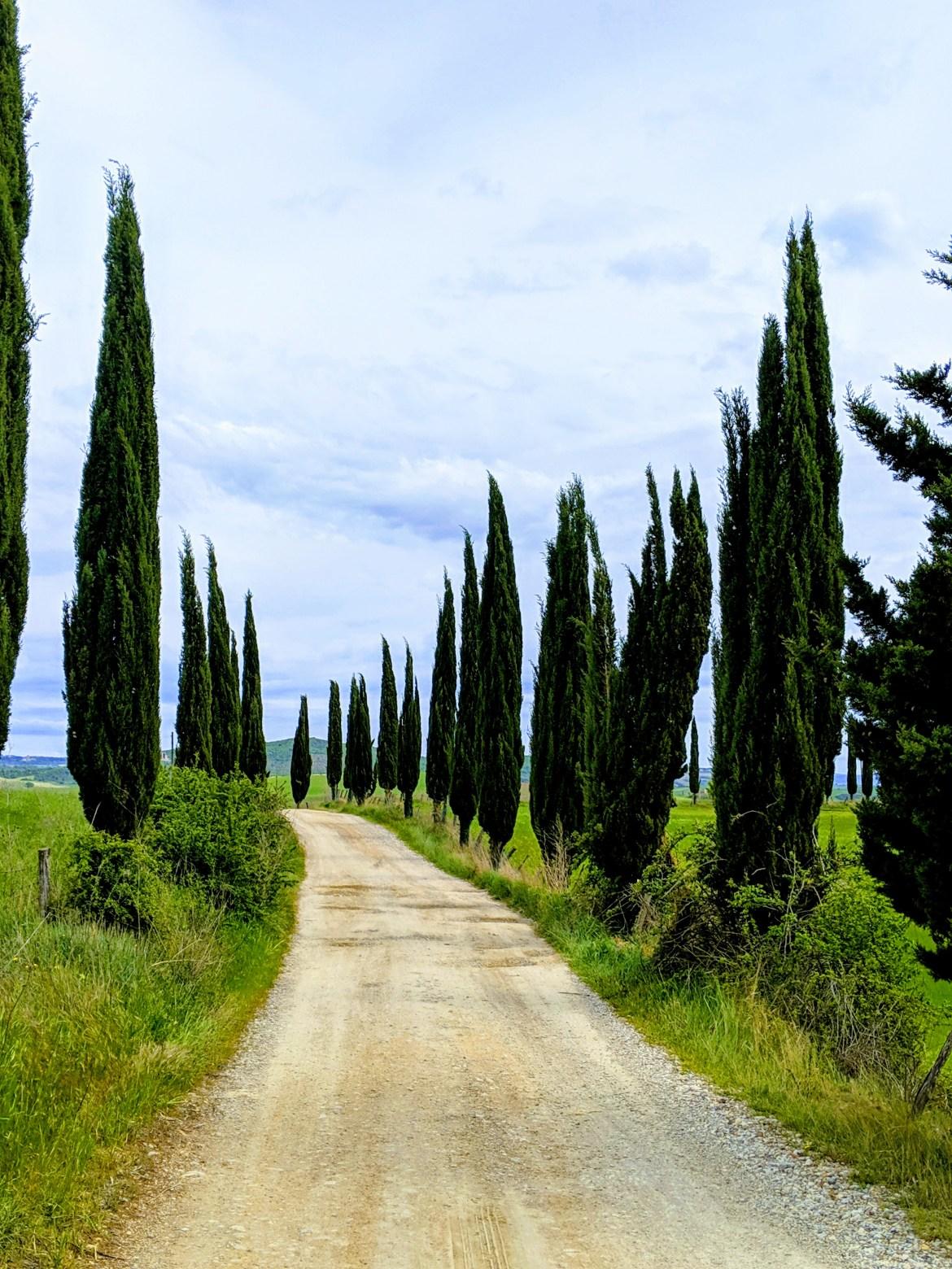 Tuscany 2019 05