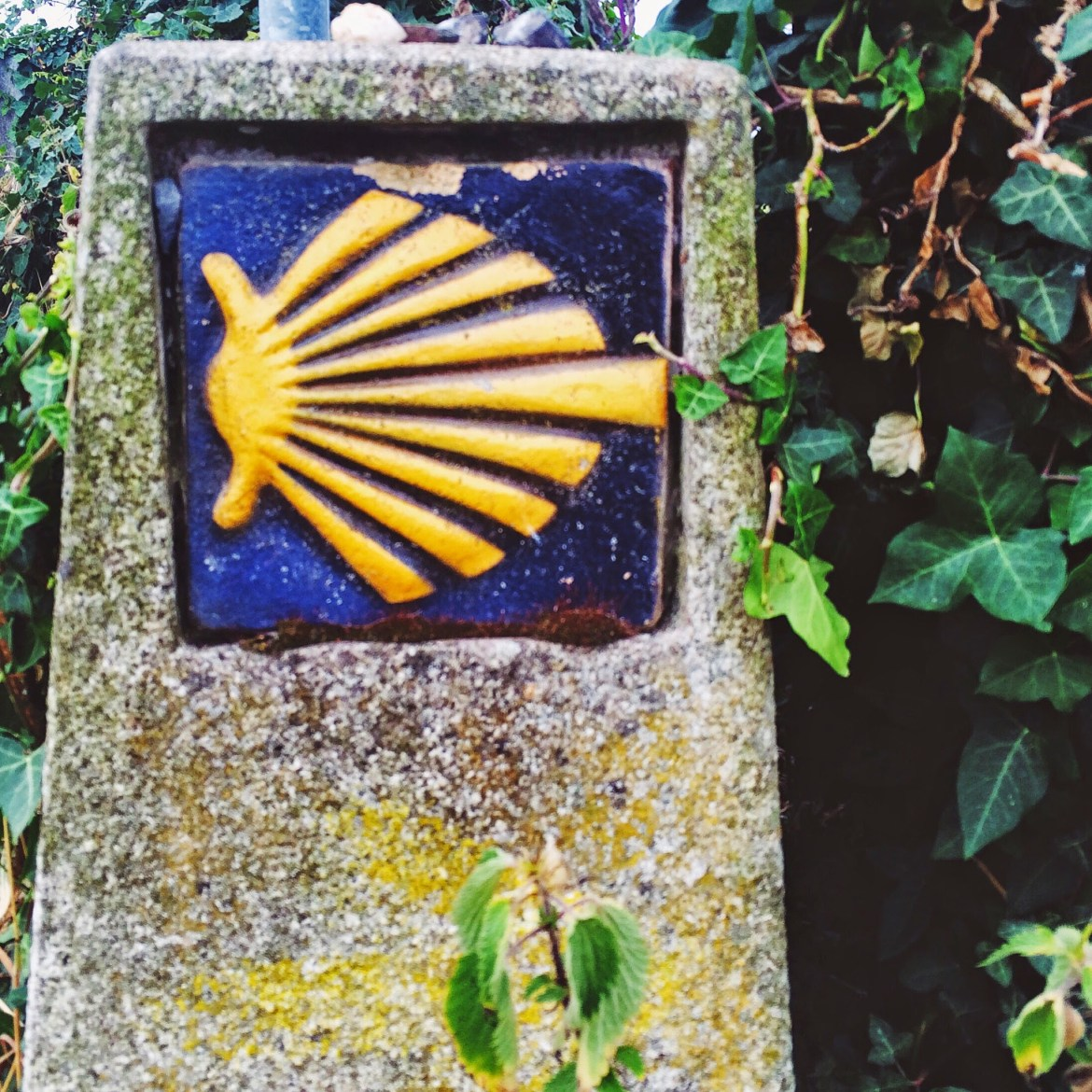 Return to the Camino