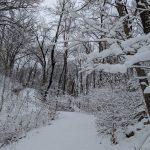 Snapshots of Walking in Winter