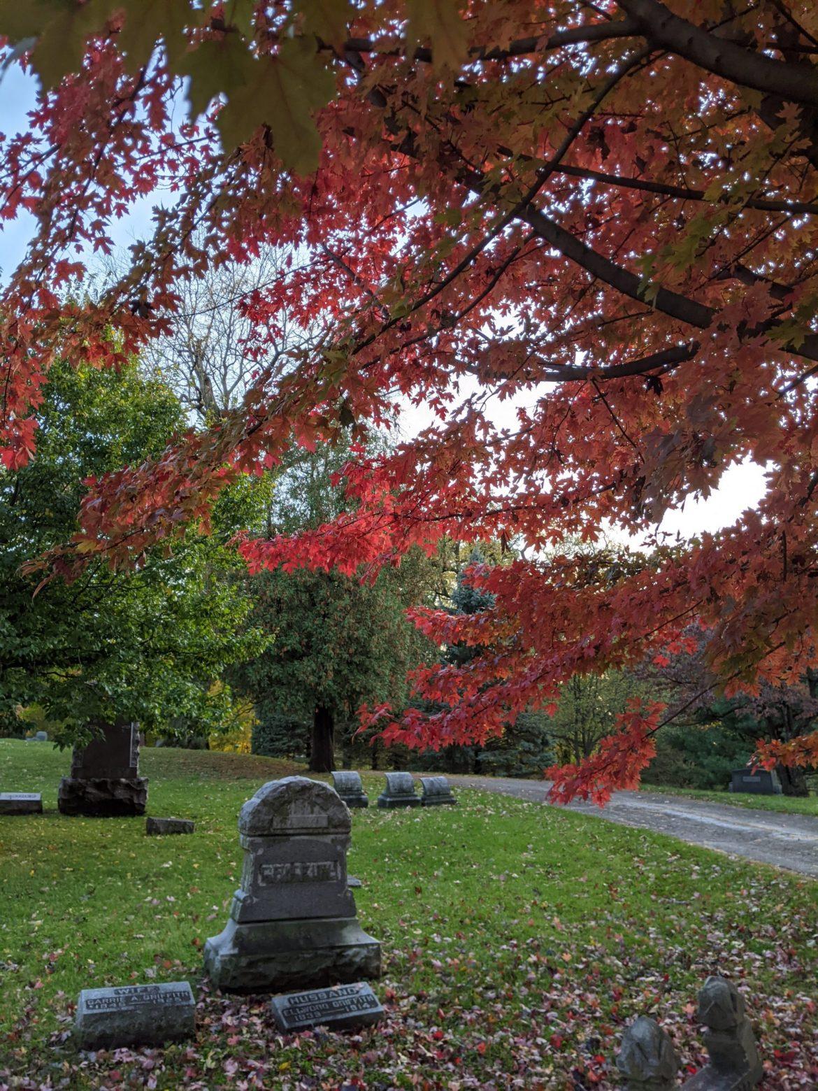 Graveyard Walking, Chippiannock Cemetary