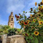 Camino de Santiago Day 6: Estella to Los Arcos