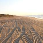 Beach tracks 4 blog
