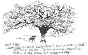 2May15 EDiM a nearby treee