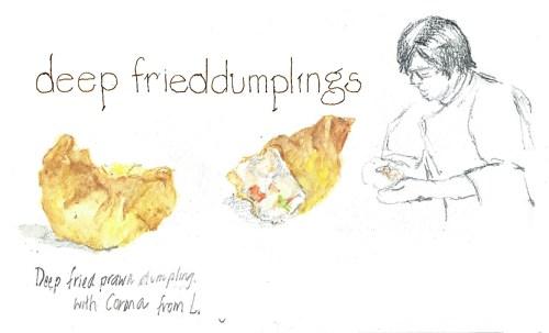 20Feb2016 dumplings lr