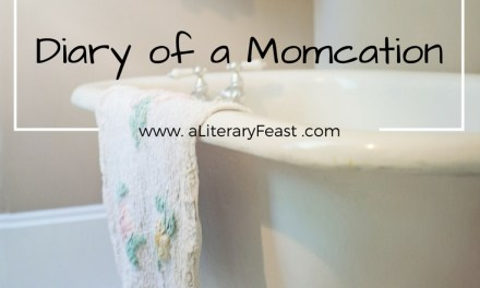 Diary of a Momcation: the Takeaway