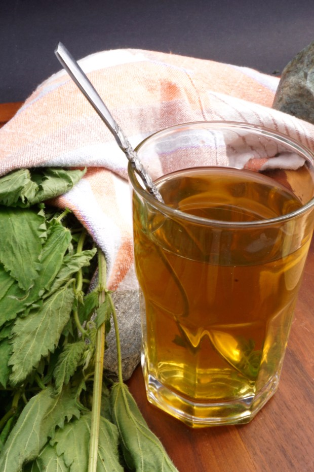 Natural Allergy Relieving Stinging Nettle Tea