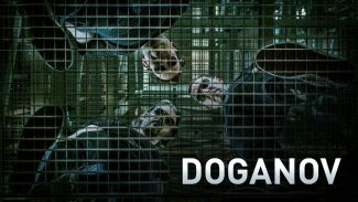 Doganov trio