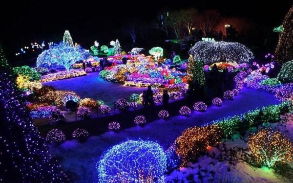 صور : في كوريا الجنوبية حديقة من أجمل الحدائق في العالم ...