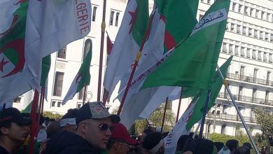 Photo of بلعلوفي، تجمع العمل الشبابي واستيراد الديمقراطية