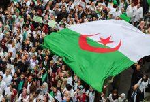 Photo of لولا الجيش ومخابراته لعرضوا الجزائر للبيع في المزاد