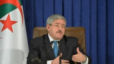 Photo of هذا ما قاله أحمد أويحيى في مؤتمره الصحفي بقصر المؤتمرات (فيديو)