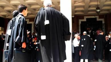 Photo of المحامون بالمدية يطالبون برحيل نقيبهم
