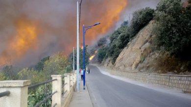 """Photo of الوزير الأول:""""حرائق الغابات خلفت 42  قتيل و لن نتسامح مع المجرمين"""""""