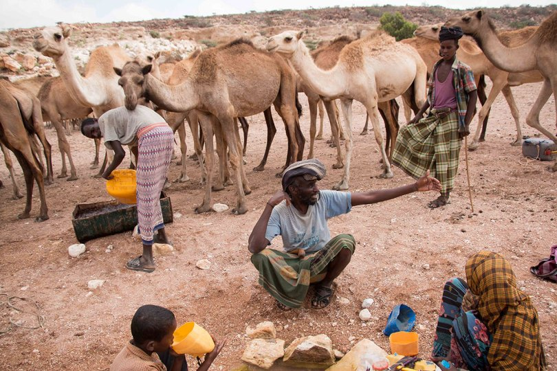 Sad: Thousands forced to move as drought strikes Puntland