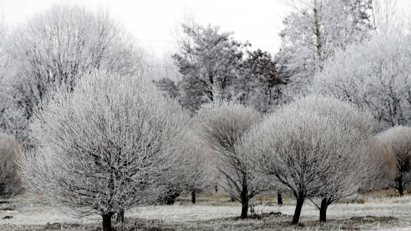 Eastern Europe set for break from two weeks of freezing ...