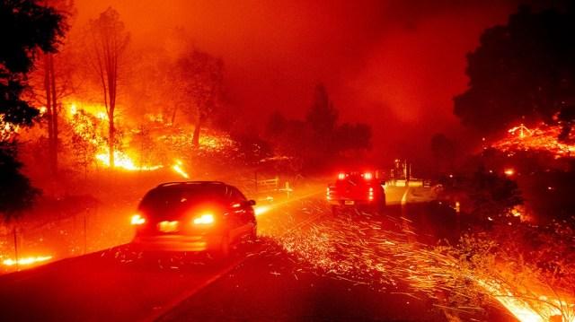 Wildfires 3