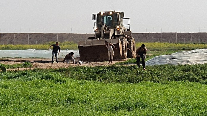 This picture taken with a mobile phone on February 23, 2020 shows men trying to collect a body as a bulldozer approaches them, along the Gaza-Israel border, east of Khan Yunis in the southern Gaza Str