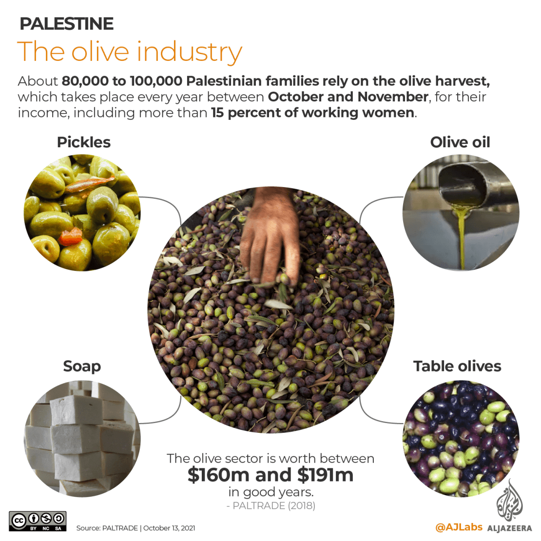 INTERACTIVE- 1 Olive harvest industry