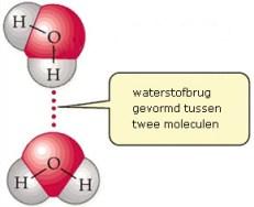 Vereenvoudigde voorstelling van de vorming van waterstofbruggen.