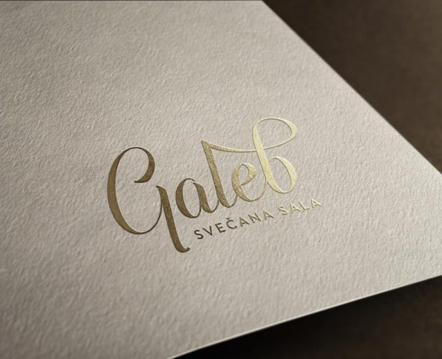 Galeb-Logo