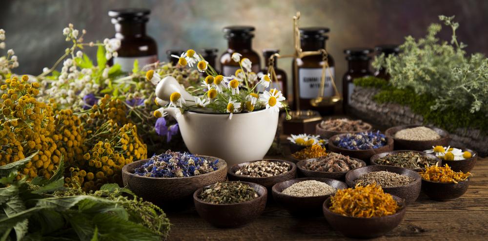 Alkaline Essentials Top 10 Alkaline Herbs