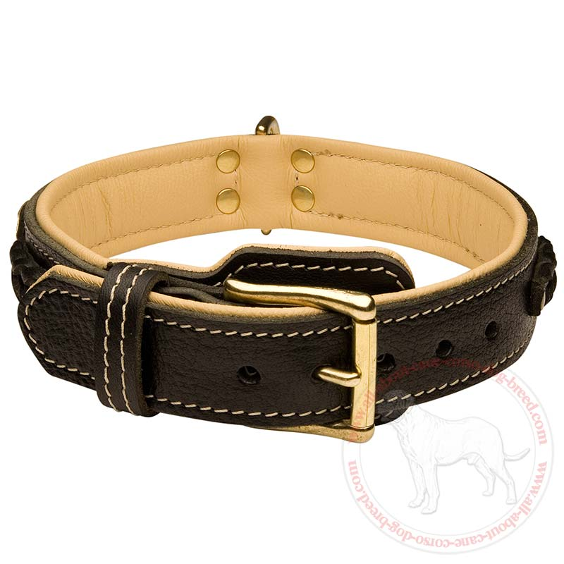 Big Dog Leather Collars Dogs