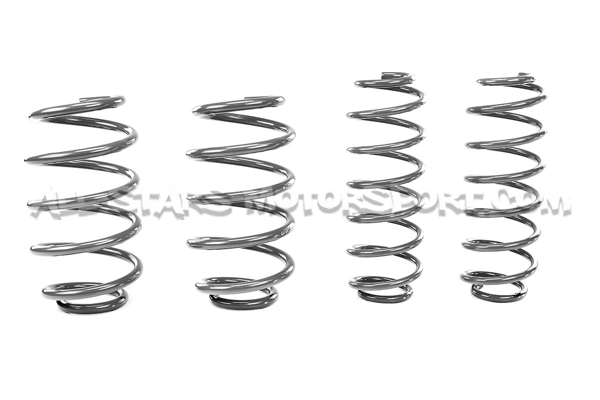 Polo 6r And 6c Gti Fabia 5j Racingline Sport Springs