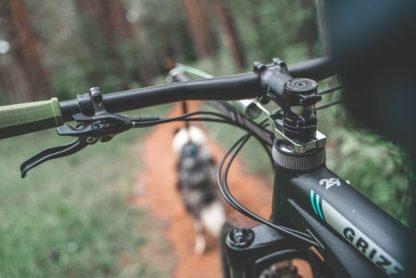 Barre de traction Non-Stop Bike Antenna