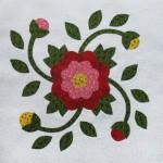 whig rose3