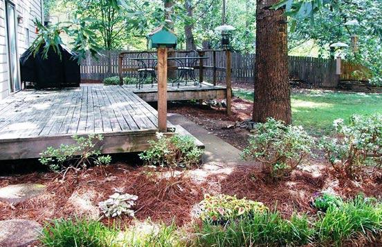 Landscaping, Birding Basics on Birds Backyard Landscapes id=28176