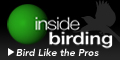 Inside Birding: A video series to help you become a better birder