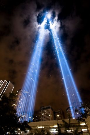 The 9/11 Tribute in Light Is Helping Us Learn About Bird Migration   All  About Birds All About Birds