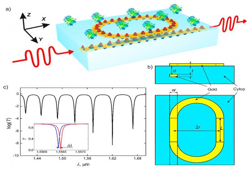 A biosensor layout provided by the Moscow Institute of Physics and Technology.
