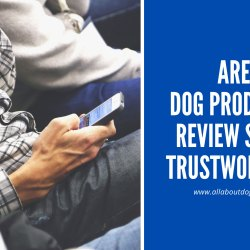 Are Dog Products Review Sites Trustworthy