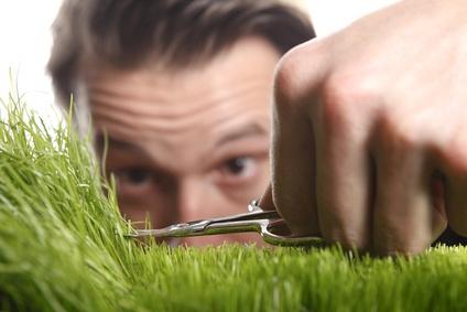 Cutting grass with scissors