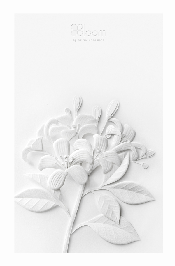 White Paper Flowers by Wirin Chaowana.