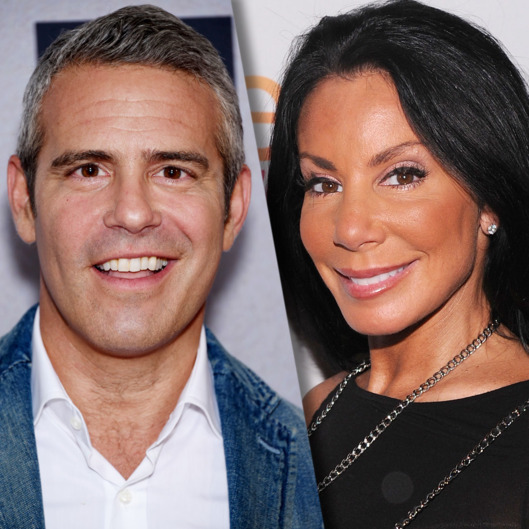 andy cohen and danielle stab