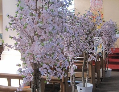 Cherry Blossom Decor Package Ireland